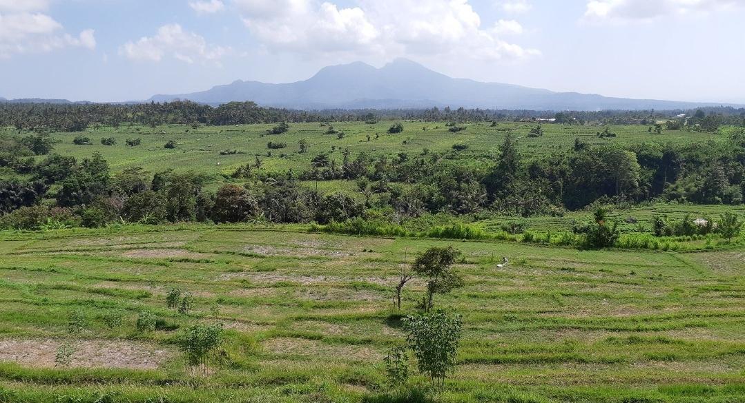 Indonesie Bali interview global dutchies Annerie