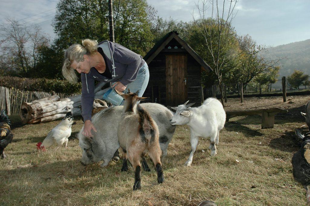 vakantie geiten Nancy interview frankrijk Global Dutchies
