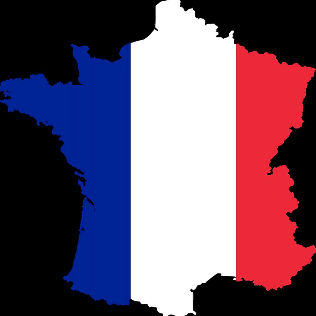 Frankrijk domain zoekt beheerdserkoppel Global Dutchies